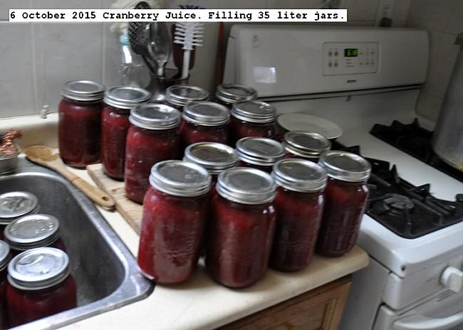 dsc_82566%20october%202015%20cranberry%20juice_std.jpg