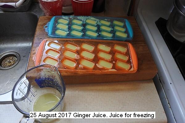 ginger%20juice%20010_std.jpg